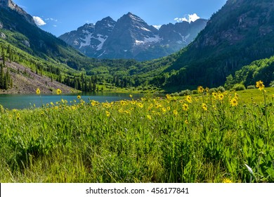 Flowering Mountain Valley - Springtime at Maroon Creek Valley, Aspen, Colorado, USA.