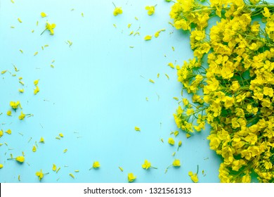Flowering oilseed rapeseed,Rape blossoms