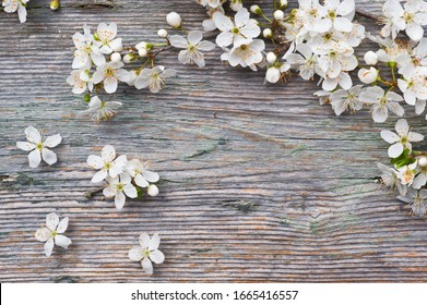 Flowering plums on vintage wooden table.