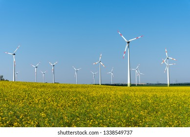 Flowering rapeseed with wind turbines in the back seen in Germany