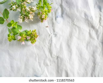 flowering twigs of oregano on a grunge paper background with copy space - Shutterstock ID 1118370563