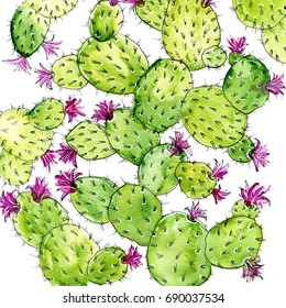 Flowering watercolor cacti. Excellent illustration for printing on clothes, dishes and other objects.