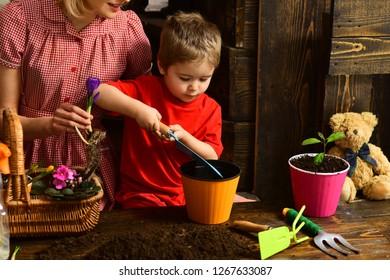 Flowerpot concept. Small boy put soil in flowerpot. Child plant flower in flowerpot. Flowerpot with dirt.