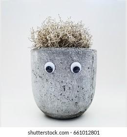 flowerpot with eyes