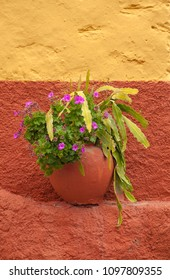 flowerpot with geranium and cactus on a small ledge