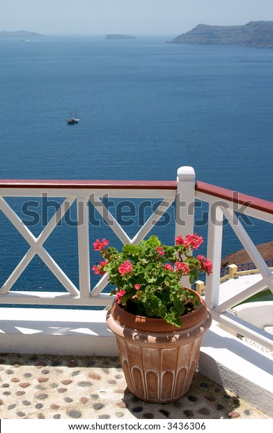 flowerpot on balcony over the sea