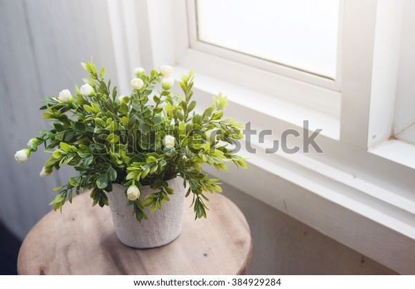 Flowerpot on round wooden table near a white window with sunlight.