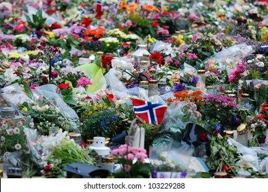 Flowers #1, A peaceful demonstration after the Oslo terror attacks
