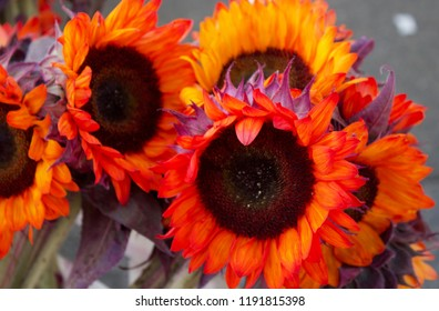 Flowers for Autumn