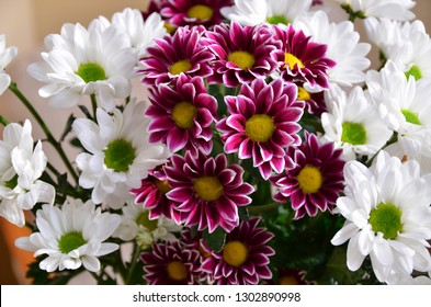 Flowers awaken a good mood and a feeling of contact with the beautiful because they are perfection itself. - Shutterstock ID 1302890998