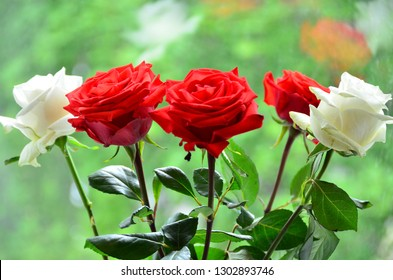 Flowers awaken a good mood and a feeling of contact with the beautiful because they are perfection itself. - Shutterstock ID 1302893746