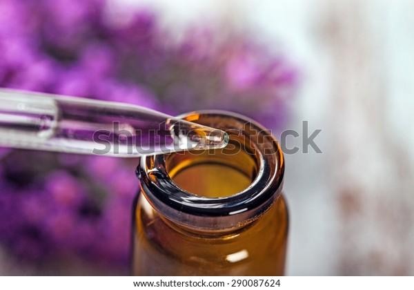 Blumen, Bach, Öl.