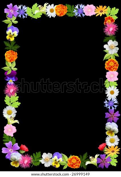 flowers background - frame,