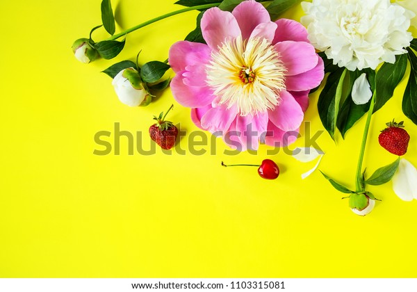 flowers background, peonies, top view of peonies