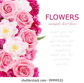 Flowers background with peonies, tulips and roses isolated on white with sample text