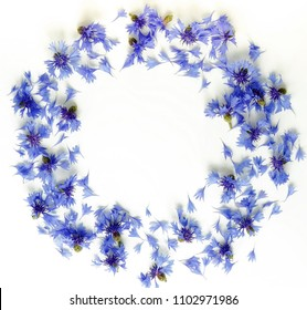 Flowers background. Wreath from blue flowers cornflowers and petals pattern on white background. top view. copy space