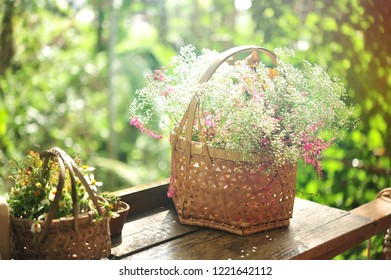 flowers in basket in garden.