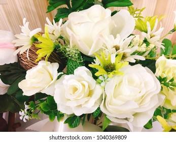 Flowers beautiful nature