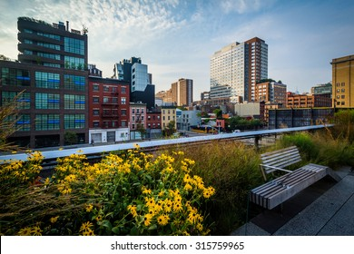 Flowers, bench, and view of buildings in Chelsea from The High Line, in Manhattan, New York.