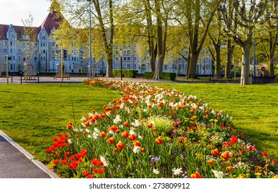 Flowers in Besancon in spring - France