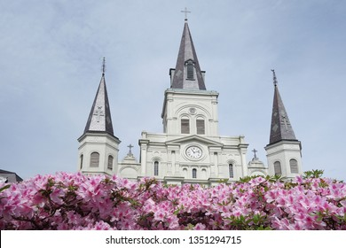 Flowers in bloom at St Louis cathedral in the French Quarter, Jackson Square, New Orleans