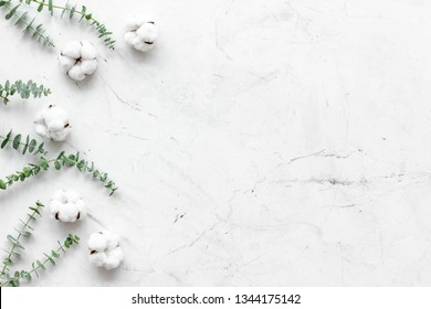 Flowers border with green eucalyptus branches and dry cotton flowers on white stone background top view space for text