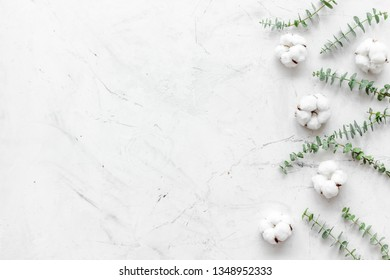 Flowers border with green eucalyptus branches and dry cotton flowers on white stone background top view space for text.