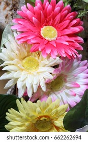 Flowers with bright color.