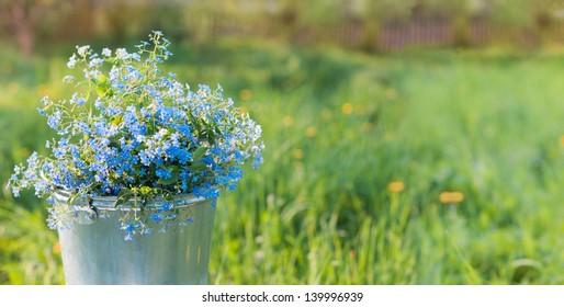 flowers in bucket on grass