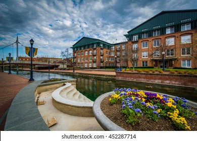 Flowers and buildings along Carroll Creek, in Frederick, Maryland.