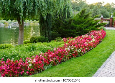 flowers and bushes with trees in a landscape park