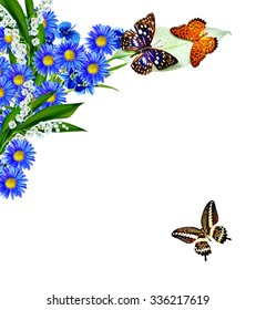 Flowers and butterflies isolated on a white background. Holiday card, chamomile