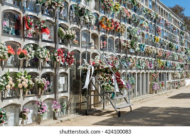 Flowers in the cemetery on the special day of All Saints typical in Spain (Barcelona November 1, 2015)