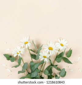 Flowers composition background. bouquet of flowers camomiles and green eucalyptus branches on pale beige background. Flowers frame. Valentine's day, women's day concept.Top view. Copy space