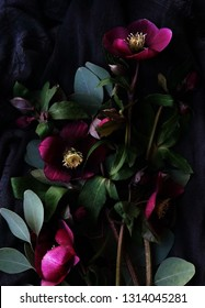 Flowers composition background. Bouquet of purple flowers Helleborus and eucalyptus leaves on a dark background. Low key.top view.