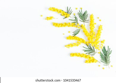 Flowers composition. Frame made of mimosa flowers on white background. Flat lay, top view, copy space