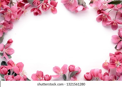 Flowers composition. Frame made of pink flowers