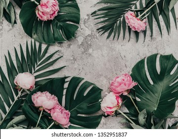Flowers composition. Frame made of pink peony flowers with monstera leaves on stone background. Flat lay, top view.