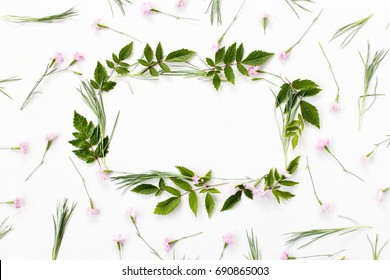 Flowers composition. Frame made of pink carnation flowers and needle-shaped and big astilba green leaves on white background. Flat lay, top view.