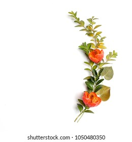 Flowers composition made of orange flowers and green leaves on white background. Flat lay, top view
