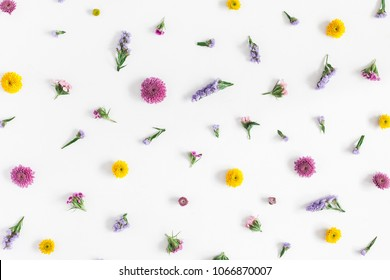 Flowers composition. Pattern made of colorful flowers on pastel blue background. Flat lay, top view