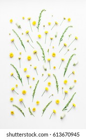 Flowers composition. Pattern made of yellow flowers on white background. Flat lay, top view