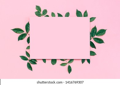 Flowers composition. Pink blank paper, fresh green rose leaves on gentle pink background. Flat lay, top view, copy space. Flower card, greeting, holiday mockup. Valentine's Day background