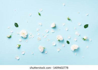 Flowers composition. White roses and floral petals on blue background. Flat lay, top view. Creative layout. Spring or summer banner with copy space.