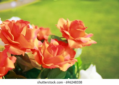 Flowers with congratulations