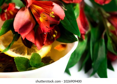 Flowers and a cup of tea. White background.