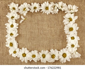 Flowers daisy on a canvas surface texture