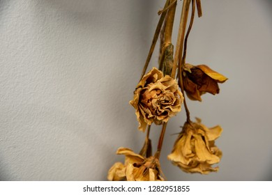 The Flowers decoration