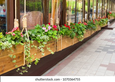 flowers in the design of tubs of a suspended wooden flower bed near the cafe in the city