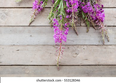 flowers of fireweed on wooden background in daylight